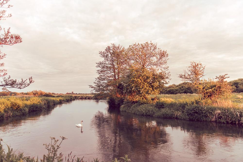 169 Sopley Mill Photographer -_DSC7799