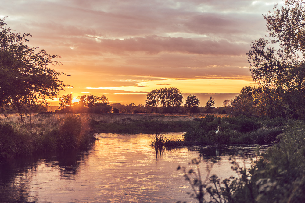 171 Sopley Mill Photographer -_DSC7803