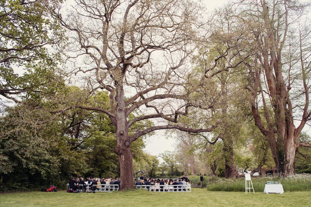 0025 Deans court wedding -_DSC8517
