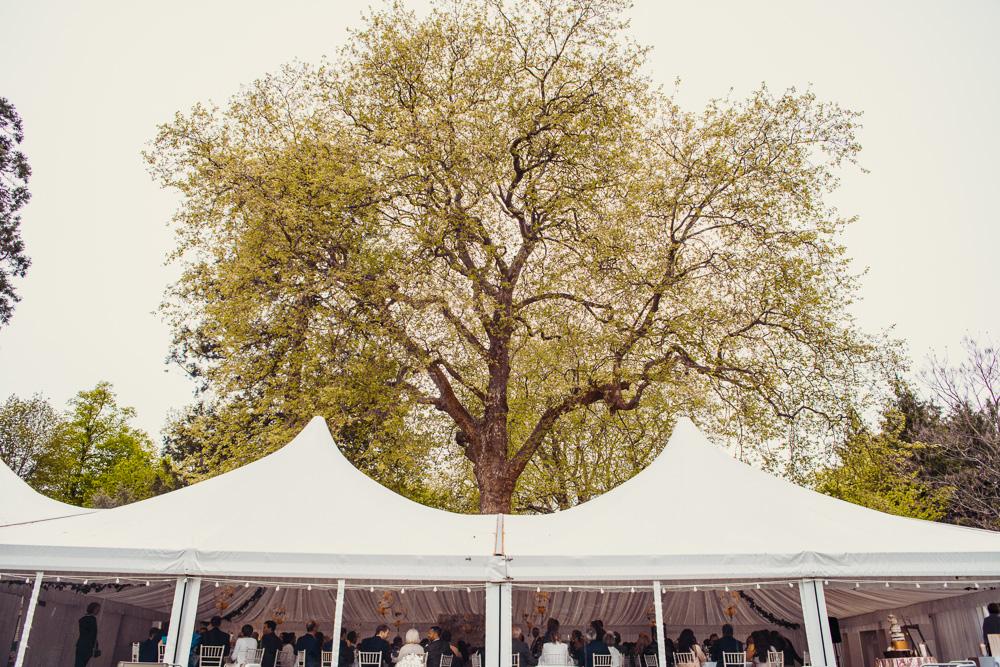 0121 Deans court wedding -_DSC9034