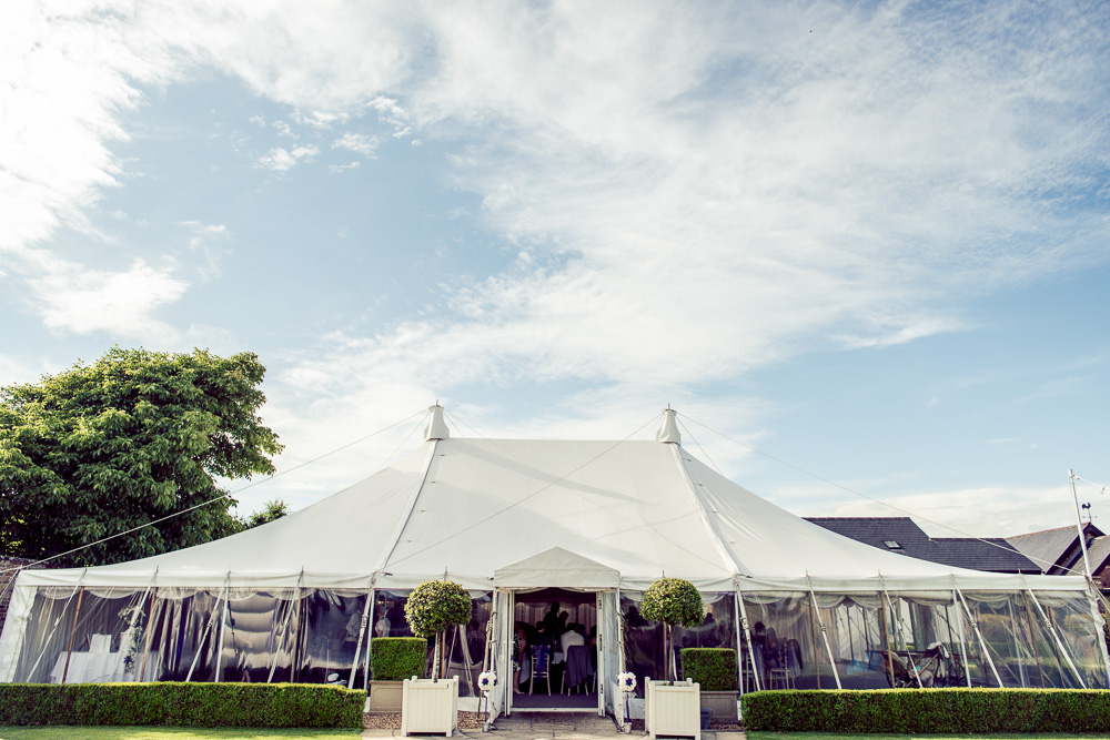 0023 Parley Manor Wedding-0627 - c - Lawes Photography -_DSC2096